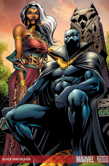 1163624-black_panther_and_storm