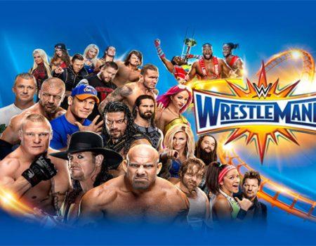 Slambros: WrestleMania 33 Feat. Mega Ran
